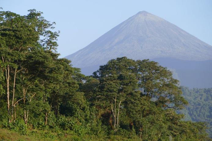 Le parc national du Virunga, en République démocratique du Congo. GRID-Arendal/Flickr, CC BY-NC-SA