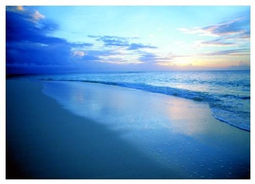 Denis Island occupe une place à part parmi les îles de l'archipel des Seychelles