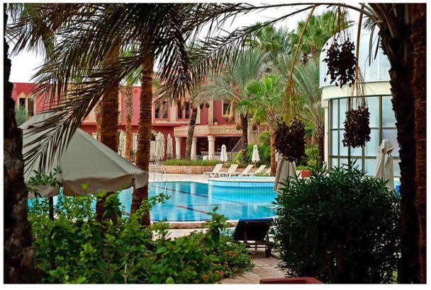 Le groupe hôtelier Palm Beach s'apprête à ouvrir un 2e établissement à Tozeur, avec un tout nouveau concept - DR : Palm Beach