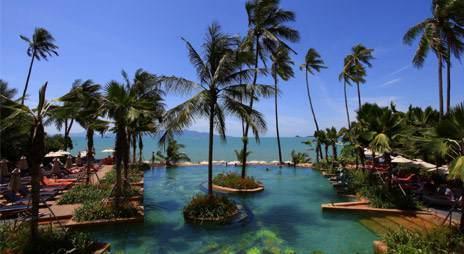 Sur une superficie de 3 000 m2, les clients ont à disposition six cabines aux parois de verre disposant de leur propre jardin tropical aménagé d'un bassin. - DR