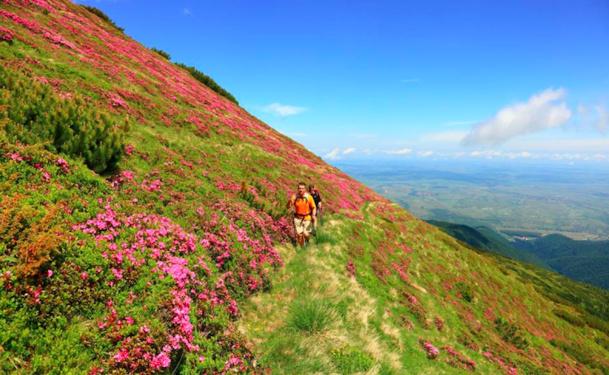 La Roumanie compte capitaliser sur ses richesses naturelles et culturelle pour attirer les visiteurs Français.DR