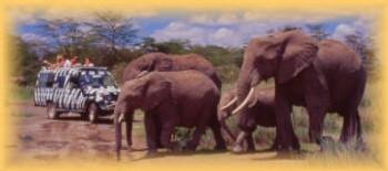 African Safari Club fait gagner un voyage au Kenya