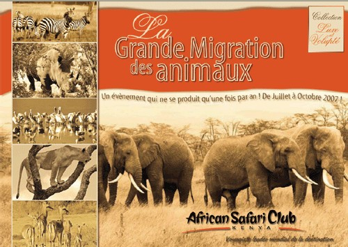 African Safari Club : mini-brochure ''La Grande Migration des animaux au Kenya''