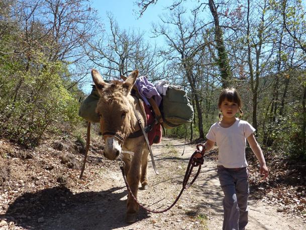 Le Sud en Vrai propose de nombreuses activités : oenotourisme, pêche, randonnées à dos d'âne, découverte des huiles essentielles, des orchidées, du miel, des châtaignes, etc - DR