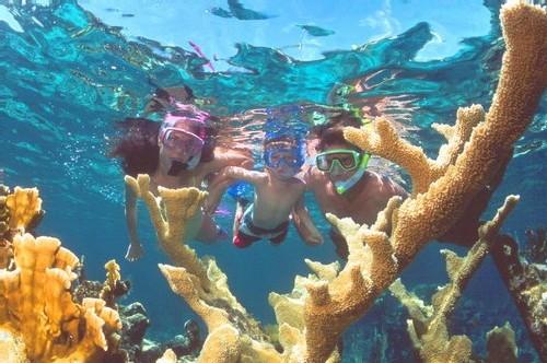 AMV Plongée lance les 'randonnées aquatiques palmées'