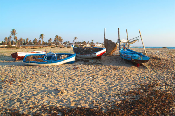 Djerba : la grève des bagagistes n'entamera pas la reprise du tourisme