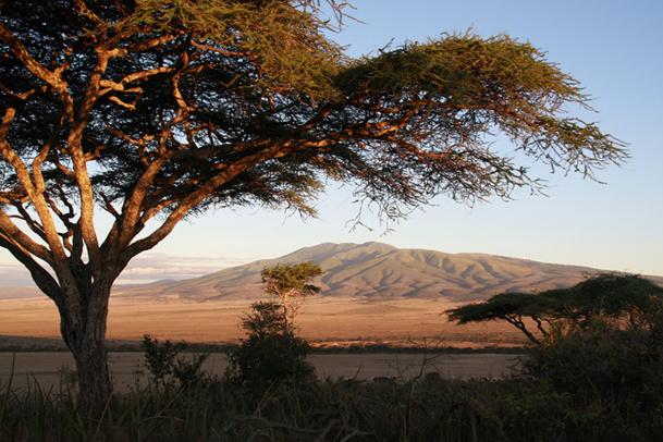 La Tanzanie souffre des recommandations du Quai d'Orsay et de l'épidémie Ebola - DR : JDL