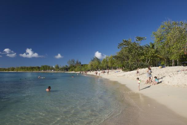 Le Comité du Tourisme des Iles de Guadeloupe (CTIG) a lancé une série d'outils digitaux pour aider la distribution à mieux vendre la destination.