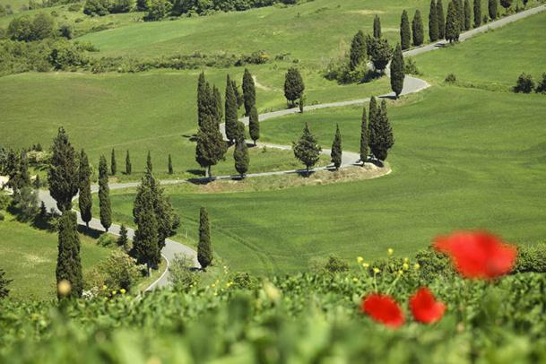 Les clients pourront découvrir la région de Sienne, ses collines, ses routes sinueuses, entre avril et octobre - DR : A. de Chassy