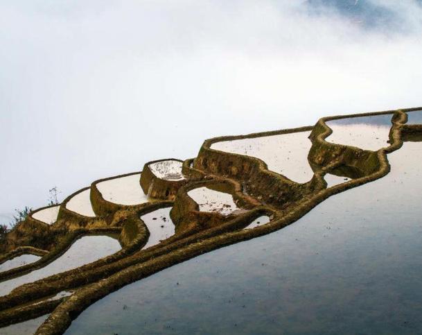 Les rizières du Yunnan classées à l'UNESCO, ont séduit presque 160 000 Français l'an passé. DR - Maison de la Chine