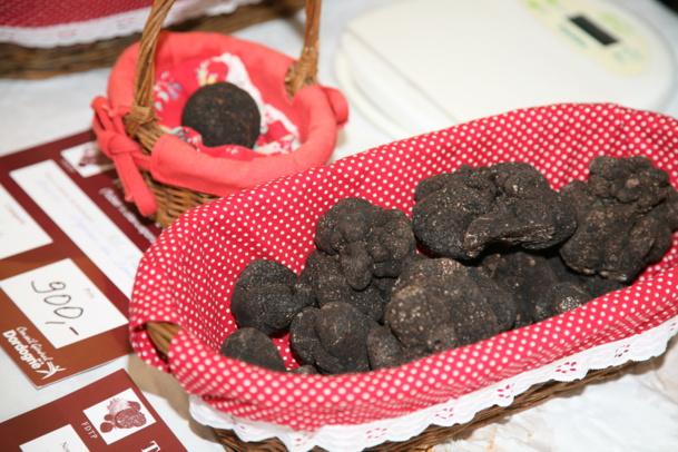 Truffes noires du Périgord - DR : Mathieu Anglada