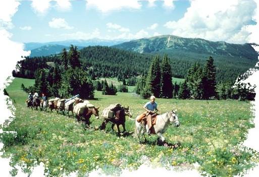 Atalante est le spécialiste des voyages à pied. Cheval d'Aventure propose des voyages à cheval