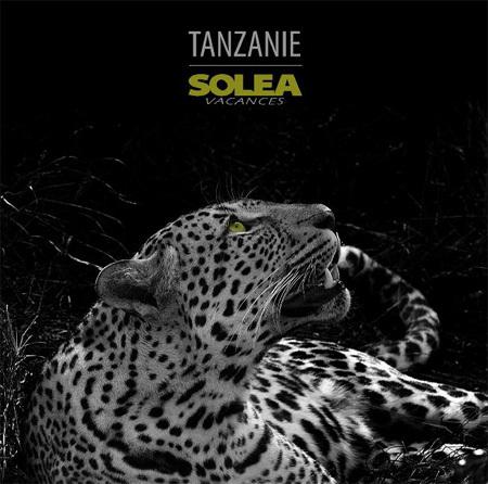 Solea Vacances fait paraître une brochure dédiée Tanzanie, Zanzibar