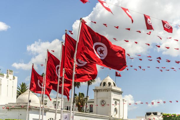 """En ce qui concerne la Tunisie, le président des TO reste clair et ferme : """"la profession reste solidaire, face au drame de la Tunisie. Nous ne réduirons pas les capacités, nous ne modifierons rien"""" © jjmillan - Fotolia.com"""