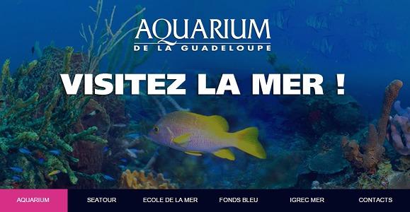 L'Aquarium de la Guadeloupe est l'un des 4 sites de l'archipel labellisés Tourisme et Handicap - Capture d'écran