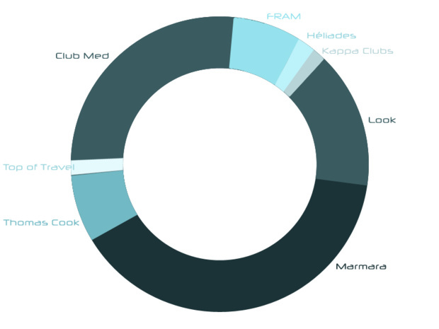 Allocation of the market shares of each tour-operator on hotel-clubs in France.