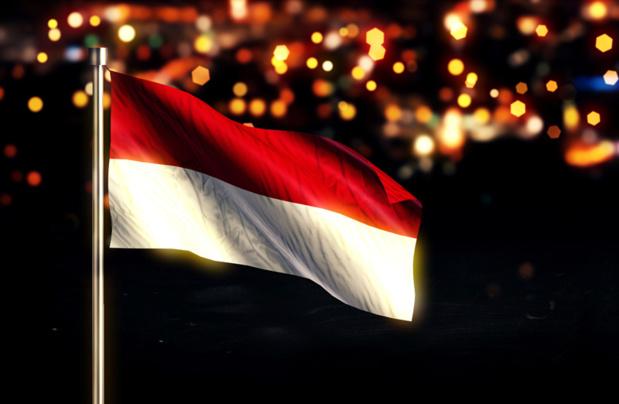 Je voudrais ici saluer (eh oui, ça arrive) l'initiative prise par le Seto et le Snav, qui ont écrit en fin de semaine dernière au ministre du tourisme indonésien, Aries Yahia © natanaelginting - Fotolia.com