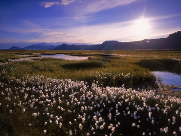 6/6 - Islande : Informations pratiques