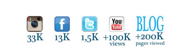 Leur communauté sur les réseaux sociaux © Présentation d'Elisa Detrez