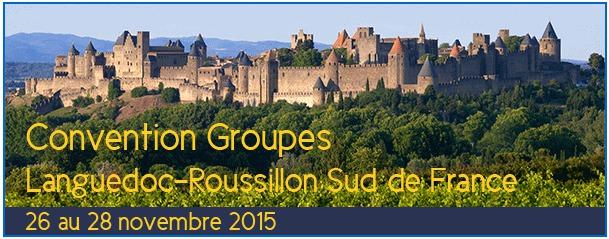 Sud de France Développement a choisi Carcassonne pour sa prochaine Convention Groupes Languedoc-Roussillon - DR : Sud de France Développement