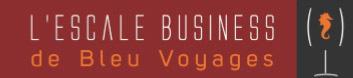 """Affaires : Selectour Afat Bleu Voyages organise la 1ère """"Escale Business"""" à Lyon"""