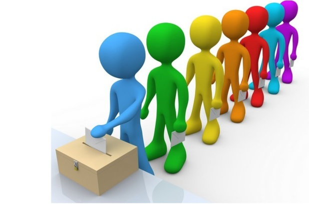 La case de l'Oncle Dom : manœuvres électorales en Sélectourie...