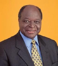 La réélection contestée de Mwai Kibaki aurait provoqué plus de 300 victimes suites aux violences tribales post-électorales