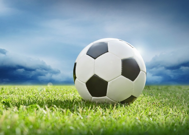 Les clubs de foot d'Arles Avignon et d'Istres Ouest Provence ont laissé des ardoises chez deux agences de la région PACA -Fotolia Auteur : Maksim Pasko