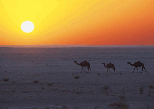 Oman tente de relancer sa fréquentation touristique sur le marché français. DR-OT Oman