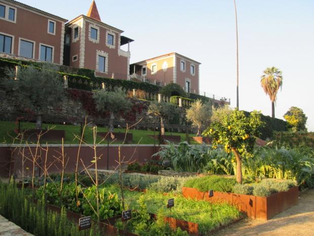 Au pied de l'hôtel, à l'emplacement de l'ancien tennis, le jardin organique qui reçoint la visite quotidienne du chef. Photo MS.