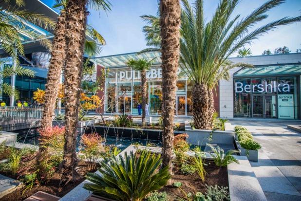Polygone Riviera-Promenade des palmiers