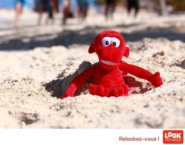 Marietton, TUI... Qui va décrocher la queue du singe rouge ? - DR : Look Voyages