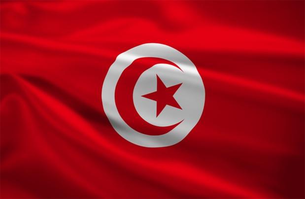 Abdellatif Hammam, Directeur Général de l'Office National du Tourisme Tunisien, accompagnée par sa charmante collaboratrice et néanmoins directrice de l'Office Tunisien en France, Wahida Jaiet ont rassemblé sur le Salon l'ensemble des participants lors d'un cocktail amical - DR : lculig - Fotolia.com