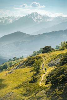 La Suisse en VTT. Ici près de Leuk dans le Valais. BMC/Switzerland Tourism.