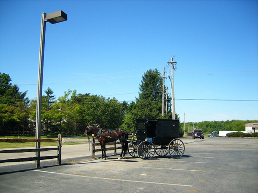 Un Amish fait ses courses, sa carriole au parking