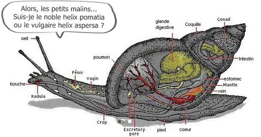 SNCF : attention, une ''bavure'' peut en cacher une autre...