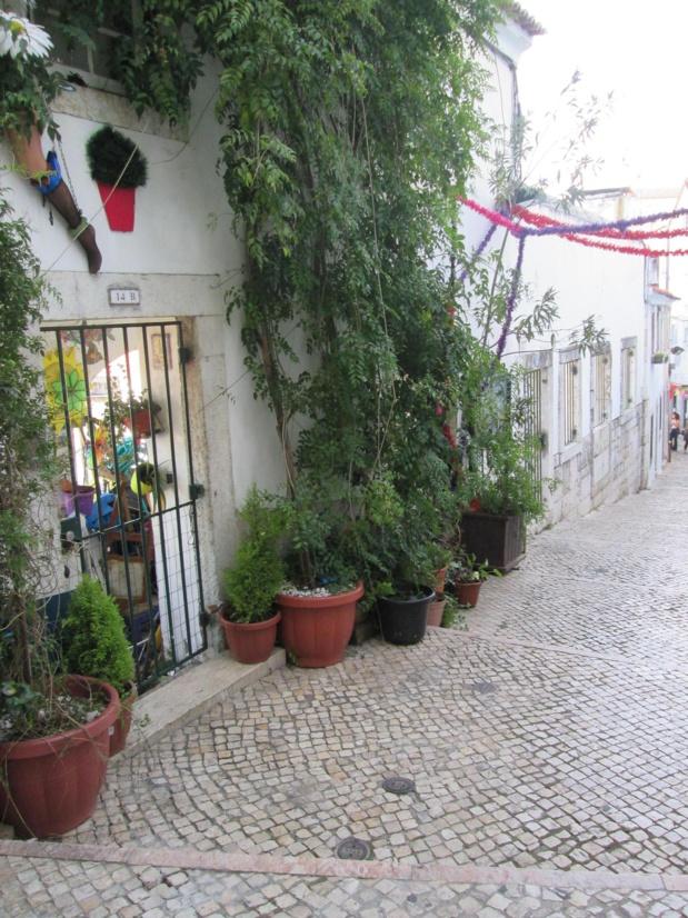 Se laisser perdre dans les ruelles pentues de Alfama le plus ancien et l' un des plus typiques quartiers de Lisbonne et se laisser séduire par la créativité de ses habitants… Photo Ms.