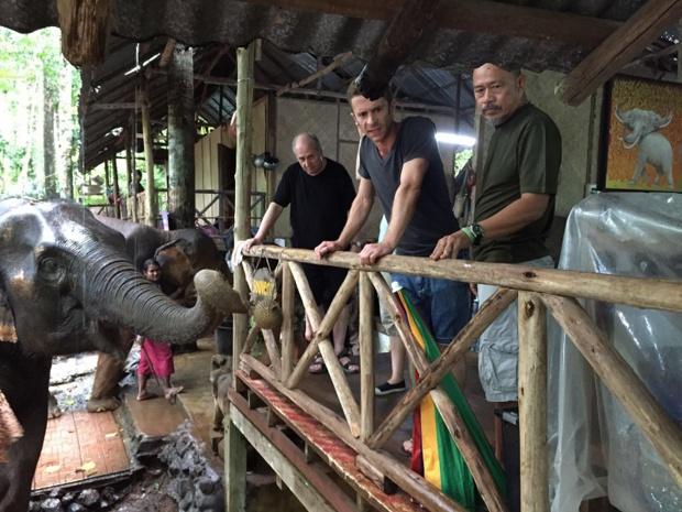 Dans la réserve d'éléphants à Koh Chang - DR : J.-P.C.