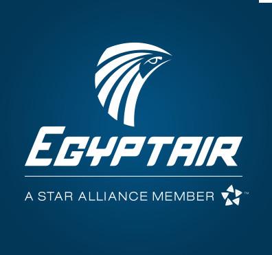 Crash Egyptair : l'hypothèse d'un incendie se précise