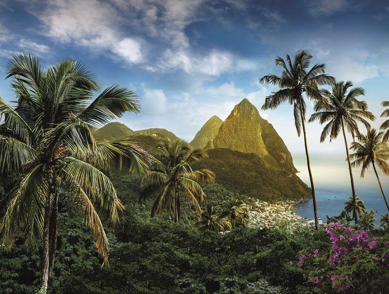 Évoquer Sainte-Lucie sans parler de ses paysages est impossible. Entre mer et montagne, sa végétation et sa faune sont très variées - DR : OT Sainte Lucie