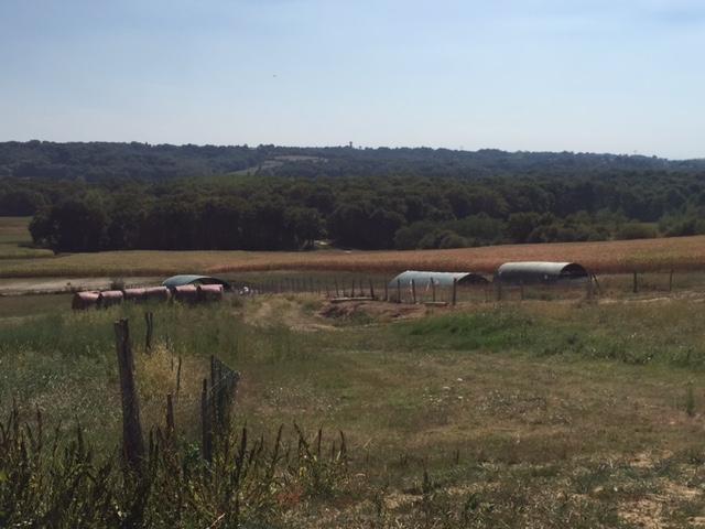Moulié Farm -Brassempouy