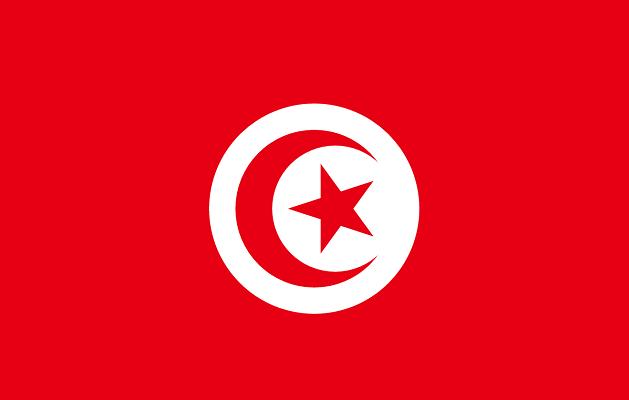 Drapeau de la Tunisie - DR : Wikipedia