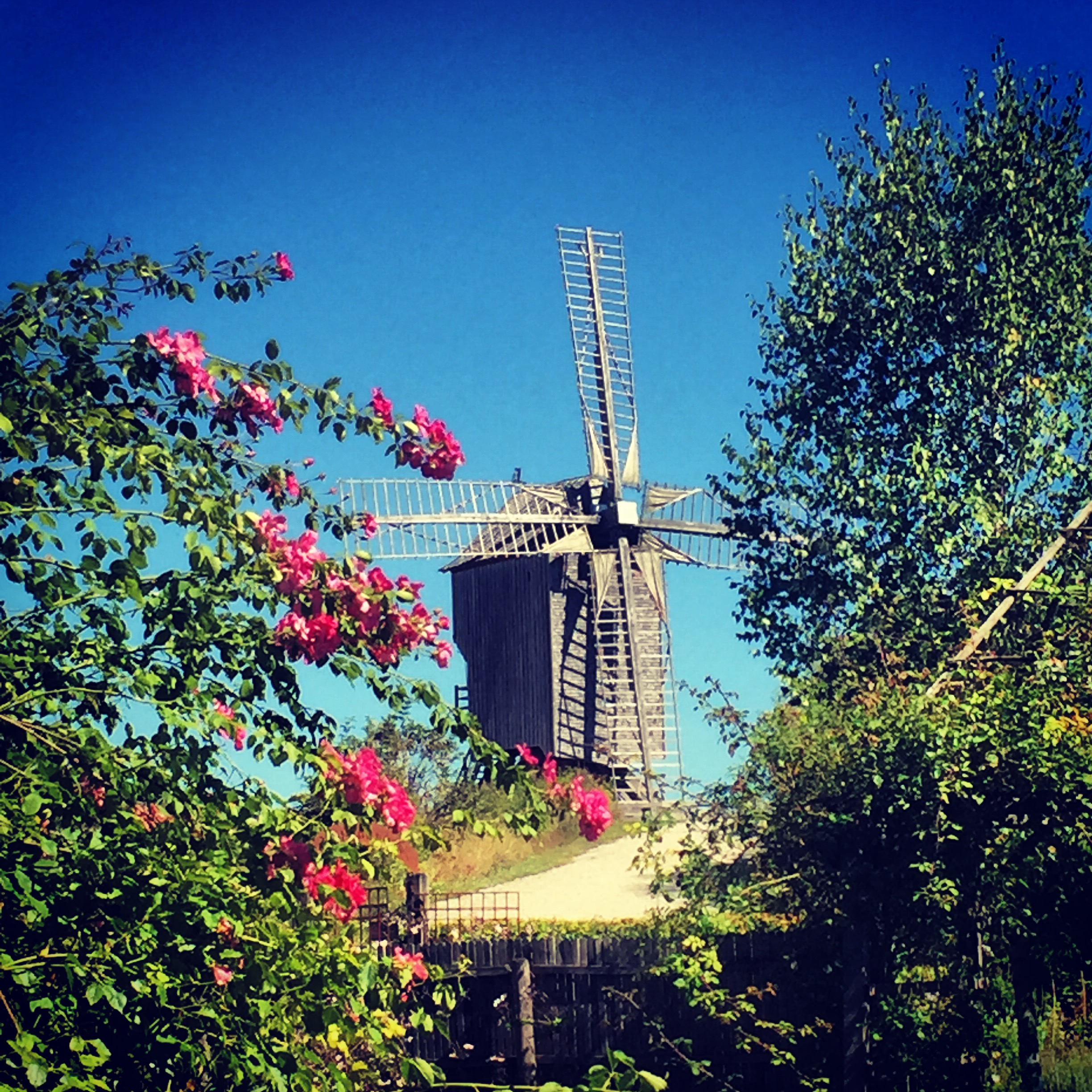 Moulin de Dosches (photo: SHD)