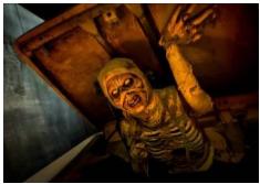 Parcs d'attractions français : Halloween, une saison très attendue !