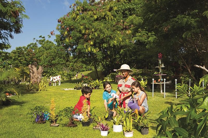 @Now Garden Punta Cana