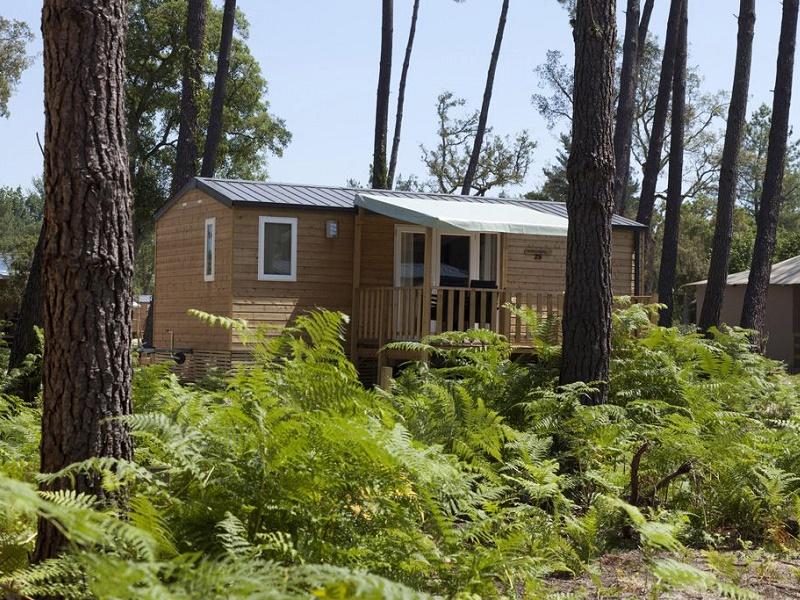 Le camping de Soustons, ex-FRAM Nature repris par Sandaya, propose des hébergements en bungalows de 2, 4 ou 6 personnes - Photo : FRAM Nature