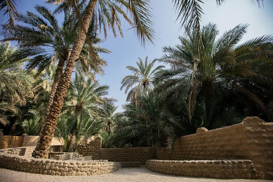 Al Aïn sera le décor de nombreux événements autour du patrimoine culturel en 2017 - Photo : Abu Dhabi Tourism & Culture Authority