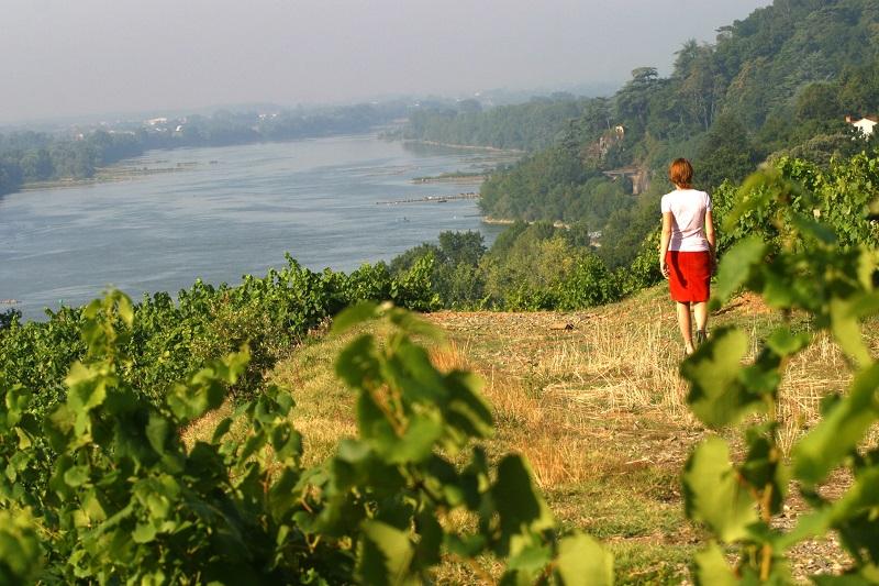 Les Pays de la Loire offrent de nouveaux itinéraires et de nouvelles activités pour cette année 2017