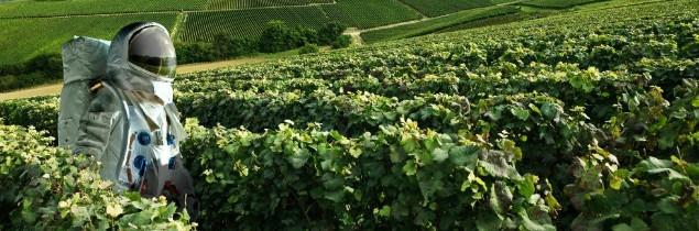 Le visuel qui a mis en colère Comité Interprofessionnel des Vins de Champagne - DR