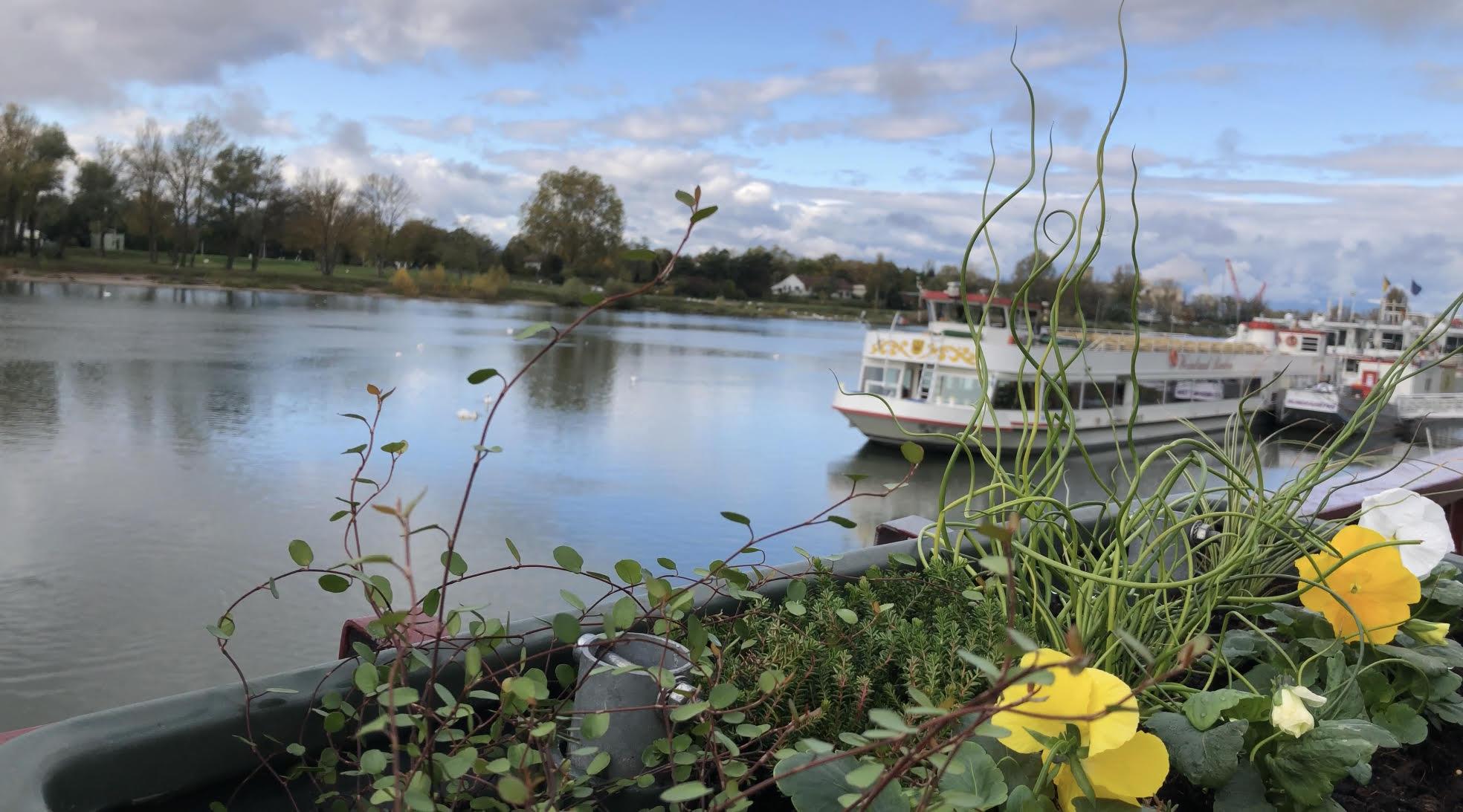 Le secteur du tourisme fluvial a connu une bonne fréquentation en 2016 - Photo : Voies navigables de France